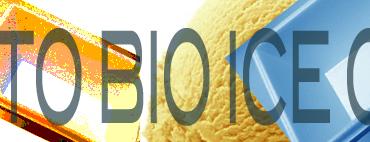 vaschette gelato x sito